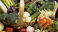 Beslenmenin Kanser Hastalıklarına Etkisi