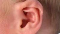 Kulak Ağrıları ve Kulak Enfeksiyonları