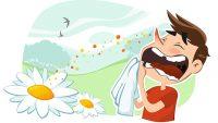 Alerjiye Neden Olan Maddeler Alerji Belirtileri ve Asıl Sorunun Alerji Olduğunu Anlamanın Basit Yolu