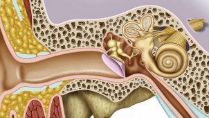 Kulak Kaşıntısı Kulak İltihabı Habercisi Olabilir