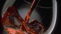 Şarabın Kimyasal Gövdesini Oluşturan Fenoller