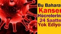Kanser Hücrelerini 24 Saatte Öldüren Baharat