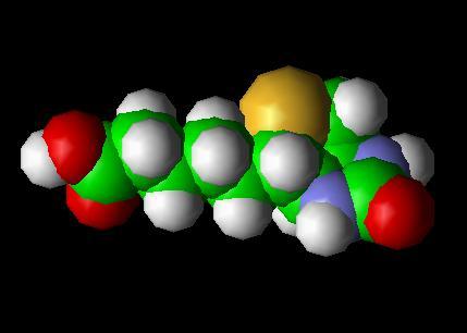 biotin_b7